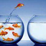 7 عقبات تمنعك من التطور.. كيف تتجاوزها؟